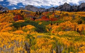 Обои осень, лес, небо, облака, горы, краски