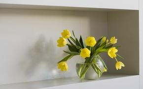Картинка вода, цветы, тюльпаны, полка, ваза