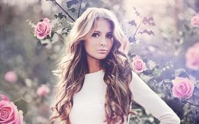 Картинка взгляд, девушка, розы, красивая