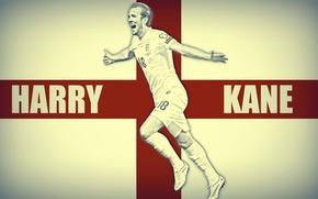Картинка Tottenham Hotspur, Harry Kane, Гарри Кейн