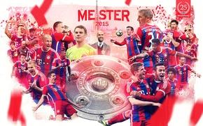 Картинка wallpaper, sport, team, football, Champions, FC Bayern Munchen, Bundesliga, players, Meisterschaft, trainer