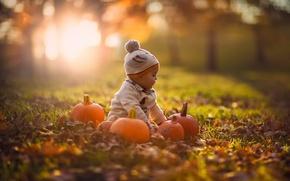 Картинка осень, природа, тыквы, ребёнок, боке