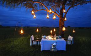 Картинка лампы, романтика, вечер, саванна, Африка, шампанское, romantic, ужин, bush, dinner