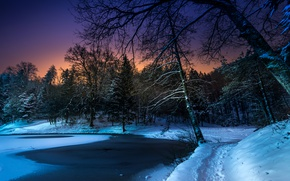 Обои зима, снег, деревья, ночь, пруд, парк, тропинка