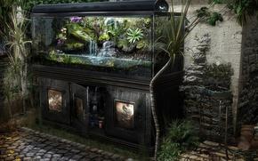Обои реализм, аквариум, растения