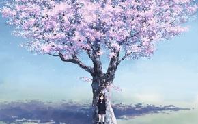 Обои девочка, вишня, аниме, весна, сакура