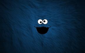 Обои мех, рожа, синий, cookie Monster