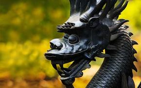 Картинка Dragon, Wallpaper, Macro