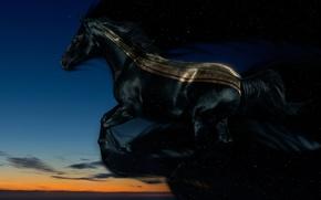 Картинка ночь, Лошадь, вечер