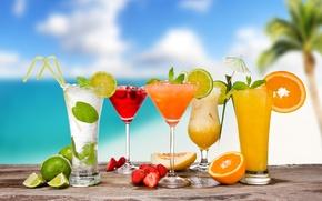 Обои мохито, дыня, коктейли, цитрусы, трубочки, ягоды, cocktails, фрукты, апельсин, бокалы, лето, зонтики, пина колада, лайм, ...