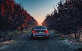 Картинка BMW, German, Car, Sunset, 335i, Sport, Rear, F80