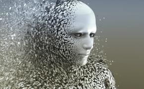 Картинка effect, gray, destruction, Human Body
