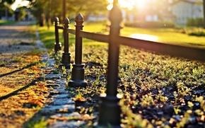 Картинка зелень, трава, солнце, макро, деревья, природа, фон, widescreen, обои, забор, размытие, ограда, ограждение, wallpaper, nature, …