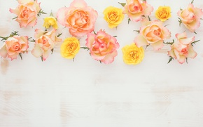 Картинка wood, flowers, roses