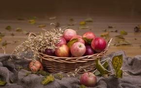 Обои корзина, колосья, яблоки
