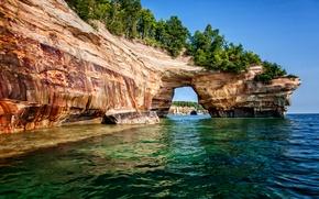 Картинка небо, дерево, океан, скалы, sky, ocean, tree, beaches, пляжи, cliff