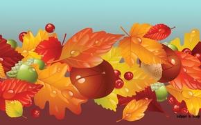 Картинка осень, листва, грибы, fall, жёлуди