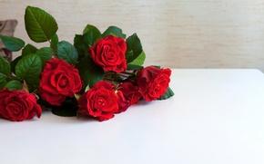 Картинка розы, красные, Red, flowers, Roses