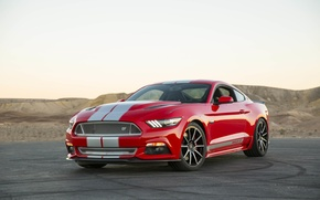 Картинка Mustang, Ford, Shelby, 2015