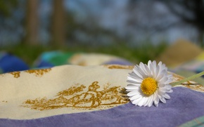 Картинка природа, Ромашка, ткань