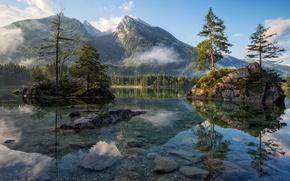 Обои вода, горы, природа, Германия, скалы, лес