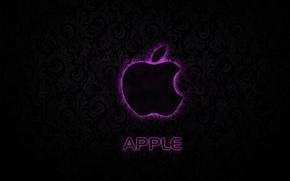 Картинка apple, logo, texture, pink, hi-tech