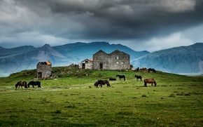 Картинка house, grass, storm, mountains, horses, farm, ruin