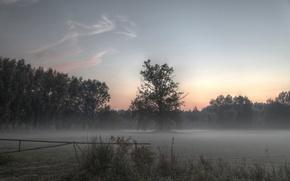 Картинка поле, туман, Природа, утро, field, nature, morning, fog