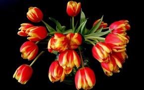 Картинка цветы, оранжевый, желтый, красный, букет, тюльпаны, ваза, черный фон