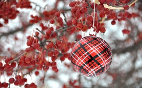 Картинка ягоды, игрушка, новый год, рождество, ветка, шарик, украшение