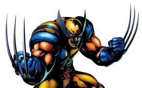 Картинка когти, белый фон, Росомаха, Wolverine, X-Men, комикс, Marvel Comics, Люди Икс