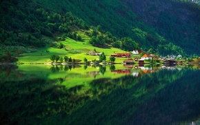 Обои зелень, лес, лето, озеро, отражение, дома, Природа, деревня