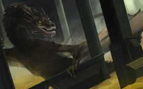 Обои дракон, эребор, арт, хоббит, Хоббит: Пустошь Смауга, золото, The Hobbit: The Desolation of Smaug