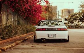 Картинка цветы, S14, ниссан, сильвия, white, Silvia, Nissan, тюнинг, сзади, белая, stance