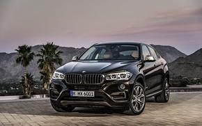 Картинка car, джип, внедорожник, автообои, BMW X6, xDrive50i