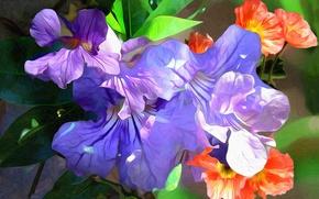 Картинка макро, линии, цветы, краски, лепестки, штрих