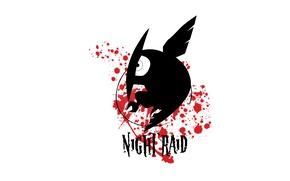 Картинка Akame ga kill, убийца Акаме, night raid