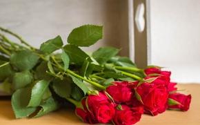Обои букет, розы, бутоны