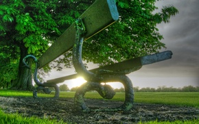 Обои трава, скамейка, дерево