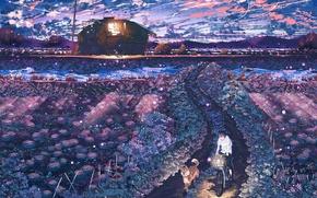 Картинка небо, облака, свет, закат, природа, велосипед, дом, поля, собака, аниме, арт, парень, hpknight