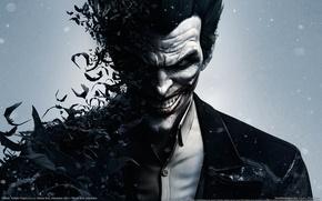 Картинка улыбка, зубы, Джокер, злодей, рубашка, летучие мыши, GameWallpapers, Joker, Batman: Arkham Origins, Warner Bros. Interactive …