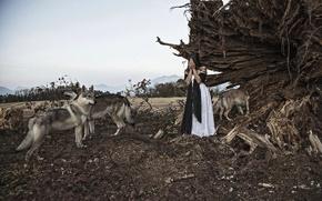 Картинка девушка, ситуация, волки
