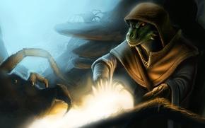 Картинка паук, Skyrim, The Elder Scrolls V, Аргонианин