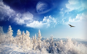 Обои небо, снег, зима, деревья, планета, орел