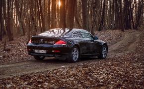 Картинка BMW, E63, BMW6
