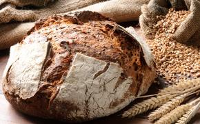 Картинка зерно, колоски, хлеб