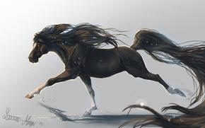 Картинка животное, конь, лошадь, арт, грива, хвост, копыта