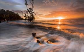 Картинка закат, природа, берег