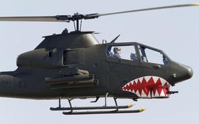 Картинка вертолет, Cobra, Bell, TAH-1P