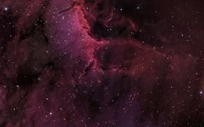 Картинка космос, Туманность Пеликан, созвездие, мироздание, IC5067
